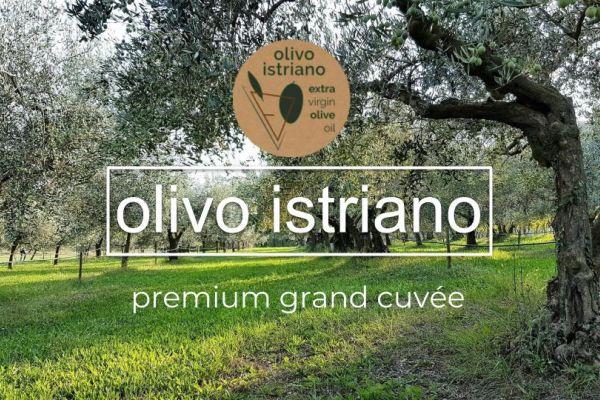 Olivo Istriano - OPG Dario Kozlović