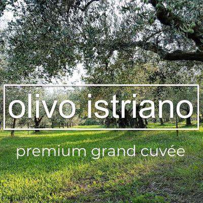 Vrhunsko Istarsko Ekstra Djevičansko Maslinovo ulje Olivo Istriano Grand Cuvée 0.25L